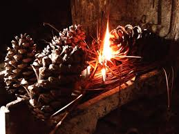 how to make colorful pine cone fire starters