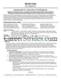 Business Analyst Resumes Examples by Business Business Analyst Sample Resume