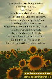 native american plants used for healing this poem was the dawning of my healing after my father u0027s too