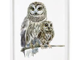 owl watercolor etsy