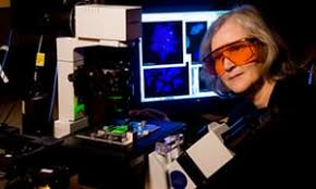 Why Cant I Last Longer In Bed Elizabeth Blackburn On The Telomere Effect U0027it U0027s About Keeping