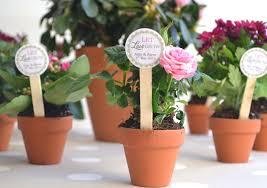 flower pot favors mini flower pot diy favors 10 x terracotta plant pots with
