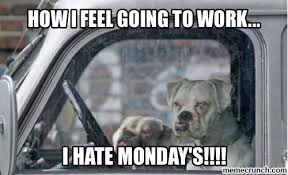 I Hate Mondays Meme - how i feel going to work i hate mondays pictures photos and