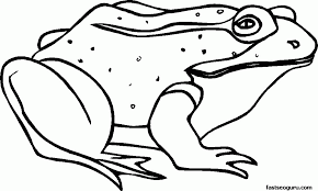 frog images for kids coloring home