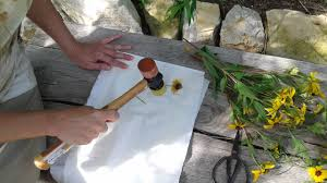native plants of kansas art and science dyes with native plants natural dyes uncategorized