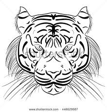 stylized face ink sketch chinese tiger stock illustration