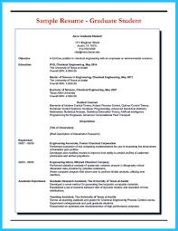 Resume Access How Professional Database Developer Resume Must Be Written