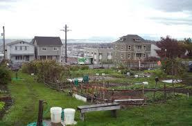 Community Gardens In Urban Areas Brownfields And Gardening Brownfields And Urban Gardening