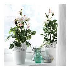 256 best artificial indoor garden images on pinterest artificial