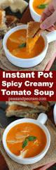 best 25 roasted tomato soup ideas on pinterest soup recipes