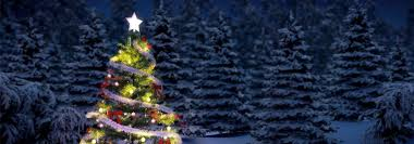 christmas tree and holiday decorations summit home services
