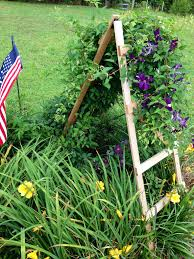 trellis for clematis outdoors pinterest clematis