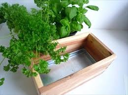 buy indoor planters ideas for indoor garden indoor vegetable