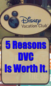 best 25 disney timeshare ideas on pinterest fun things to buy