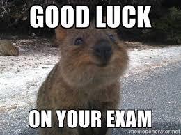 Good Luck Memes - good luck on your exam meme picsmine