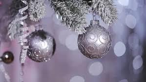balls on tree stock footage 3025588