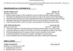 Livecareer Resume Builder Free Download Download How To Make My Resume Haadyaooverbayresort Com