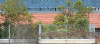 green roofs and walls yourhome