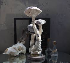 buy catathelasma imperiale interior mushroom on livemaster online