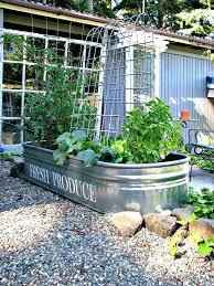 Veggie Garden Ideas Backyard Container Gardening Ideas Idea For Container Roof