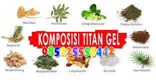 titan gel asli kupang titan gel original www agenpembesarpenissex
