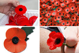 why not all poppies look the same toronto star