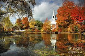england fall foliage art fine art america