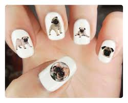 26 best nail pug images on pug nail