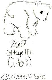 curious polar bear mother cub coloring pictures print