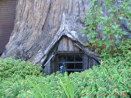 famous tree houses famous redwood tree house buy redwood