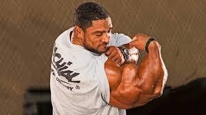 roelly winklaar the best arms in bodybuilding history