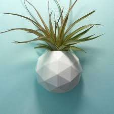 indoor wall planter geodesic air plant holder succulent
