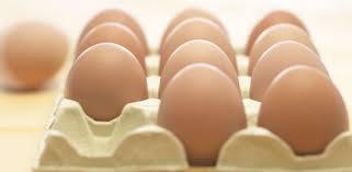 Comer um ovo por dia faz bem para à saúde, diz pesquisa
