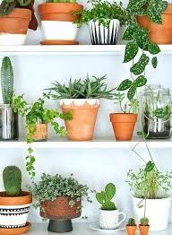 marvellous diy indoor garden u2013 coderblvd com