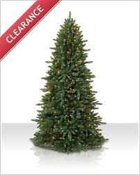 10 ft slim spruce multi lit tree tree market