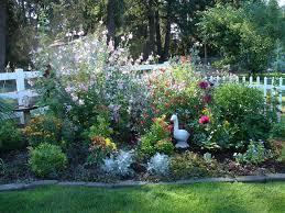 color in the perennial garden her gardening blog small flower
