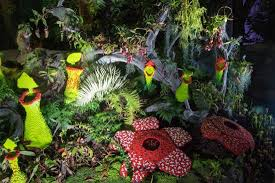 carnivorous plants and lego exhibit cloud forest in the evening