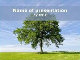 big tree powerpoint template
