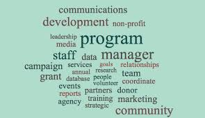 Non Profit Resume Resume Examples Keywords For Non Profit Management