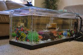 coffee table surprising coffee table fish tank design ideas
