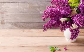 iphone themes nature flowers vase nature lilac lilacs free desktop flower themes
