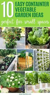 Patio Vegetable Garden Ideas 10 Easy Container Vegetable Garden Ideas For Your Yard Ideal Me