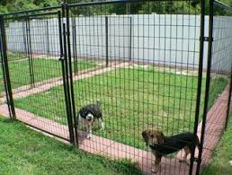 Good Backyard Pets So Simple Inexpensive Would Work For The Dogs The Great
