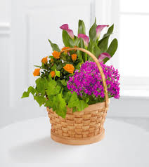 ftd harvest wishes blooming basket by better homes and gardens
