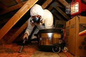 Crawl Space Cleaning San Francisco Attic And Crawl Space Cleanup Attic Perfect Richmond Ca