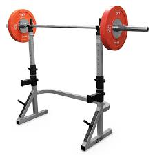 bench press and squat rack combo home designs