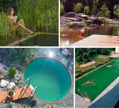 Natural Swimming Pool 243 Best Natural Swimming Pools Images On Pinterest Natural