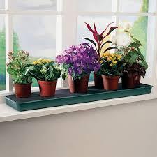 Windowsill Greenhouse Self Watering Windowsill Plant Tray Gardening Trays Greenhouse