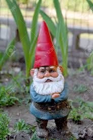 Garden Nome by Garden Gnome Guarding Plants In Garden With Red Hat And White