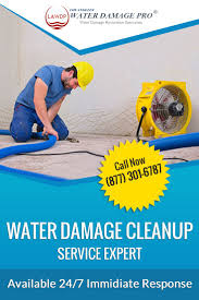 best 25 water damage company ideas on pinterest company names